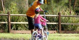 Biking Pedestrian Non-Profit Website Audit