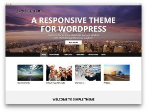 Web platform WordPress