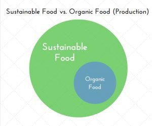 Sustainable food vs organic food